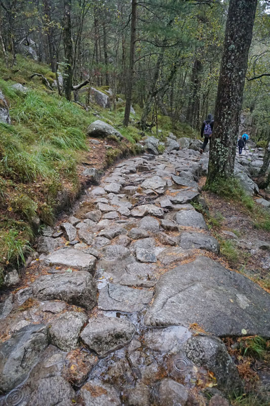 Photo of the Norway Pulpit Rock trail