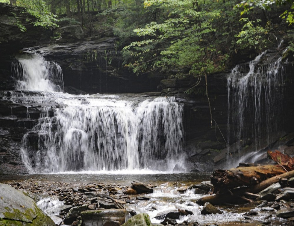 Waterfall surrounded by green foliage at Ricketts Glenn State Park