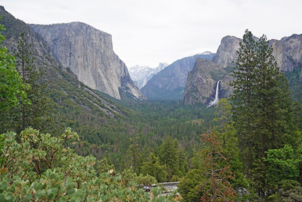 View of Yosemite Valley from Tunnel View