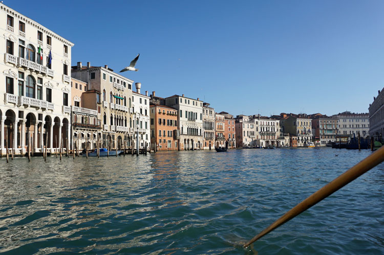 View from a gondola on the Grand Canal in Venice