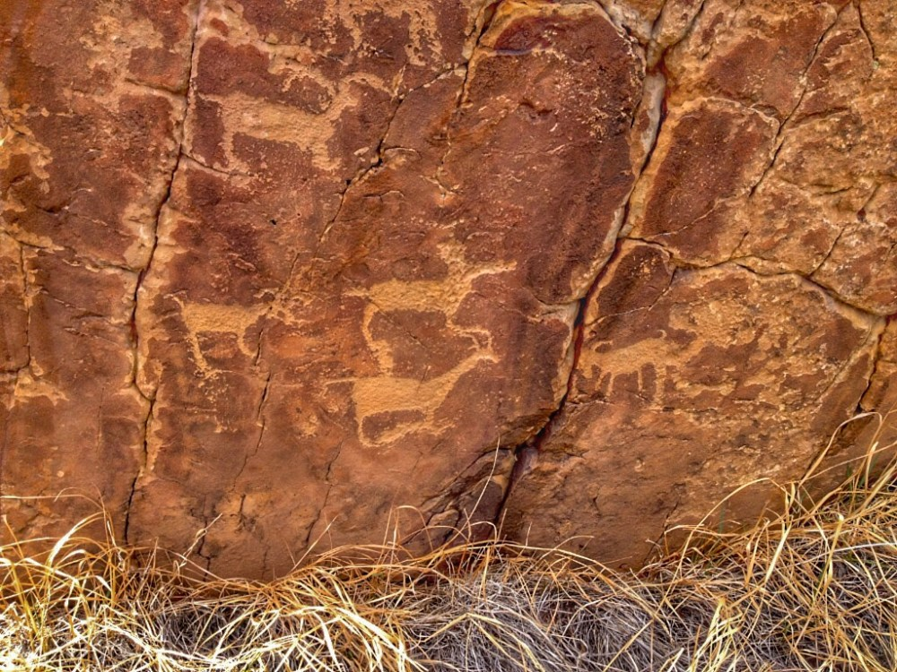 Picketwire Canyon Petroglyph