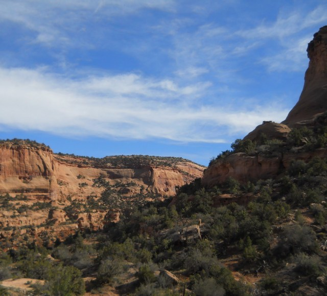 Hiking Trails in McInnis Canyons