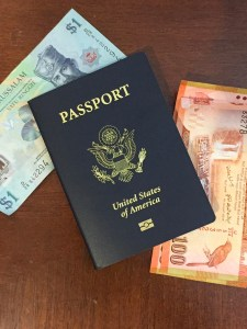 Safeguard Travel Documents