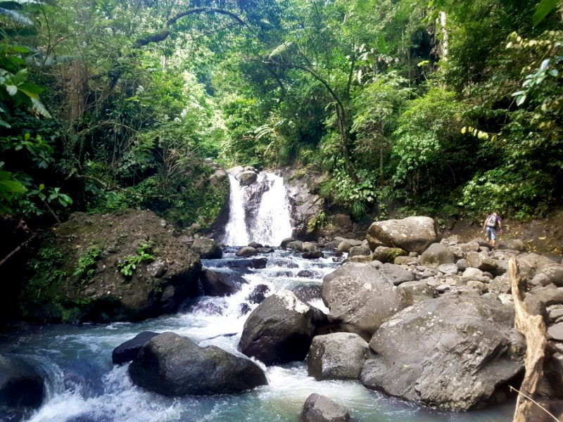 Looking for the hidden waterfall in Martinique