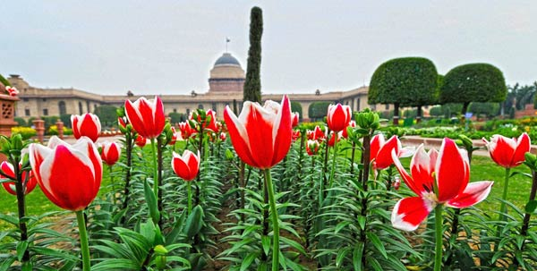 Best Places To Visit In New Delhi
