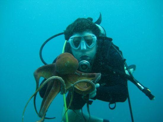 tempat menyelam terbaik