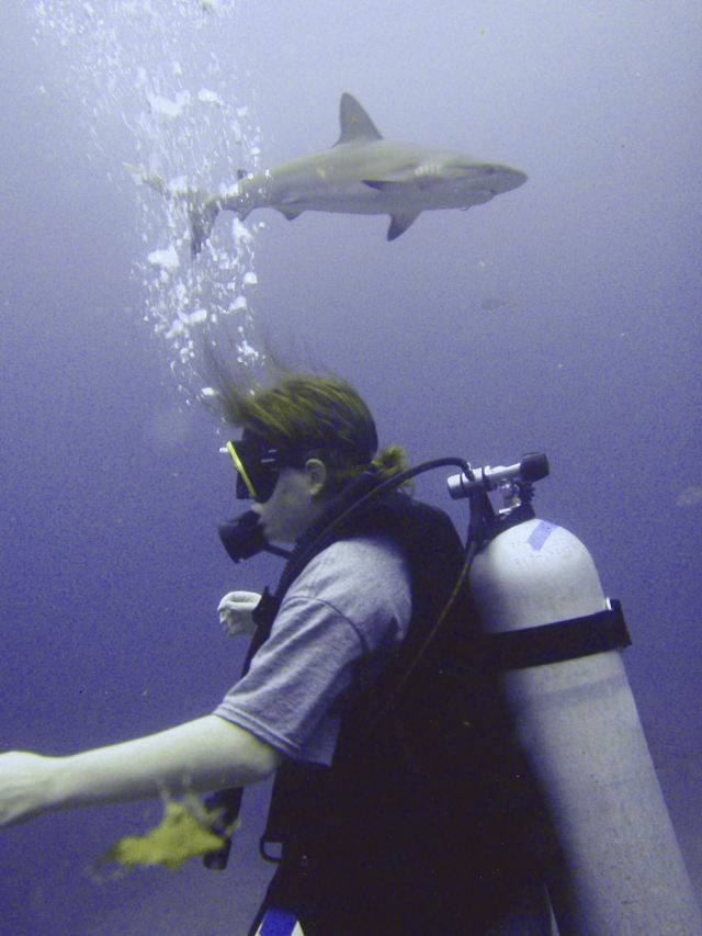 Me and a shark