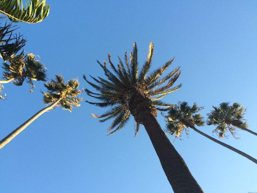 cosas que hacer en Los Angeles