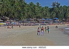 Tourist Places to visit in Goa - Palm Finged Beach, Goa