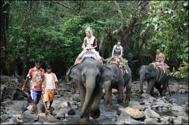 Tourist Places to visit in Goa - Bhagwan Mahavir Wildlife Sanctuary, Goa