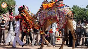 tourist places to visit near Jodhpur - Nagaur