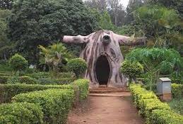 Tourist places to visit in Araku valley - Padmapuram Botanical Garden