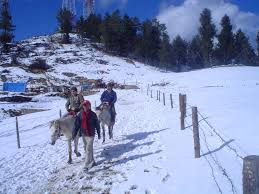 Tourist Places to visit in Kufri hill station - Horse Riding