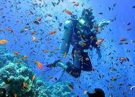 lakshadweep scuba diving sites, scuba diving in Lakshadweep