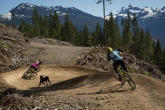 Mountain biking Squamish