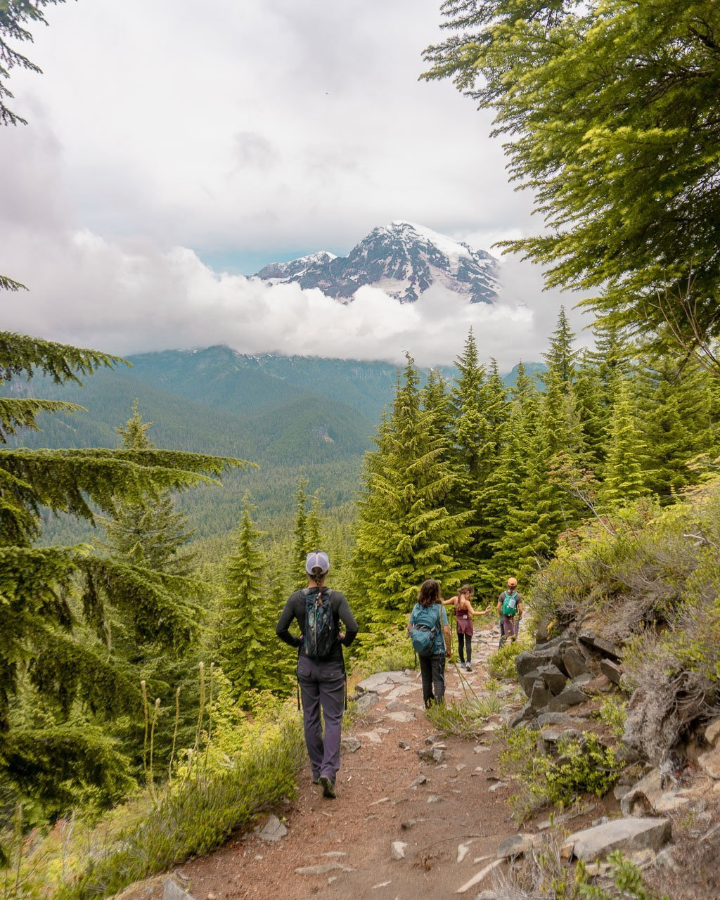 Rampart Ridge Hike near Longmire