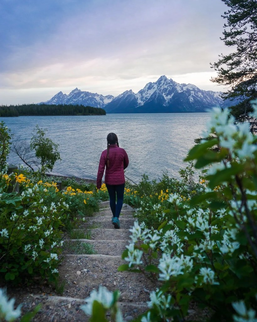 Grand Teton to Yellowstone to Glacier National Parks Road Trip Colter Bay