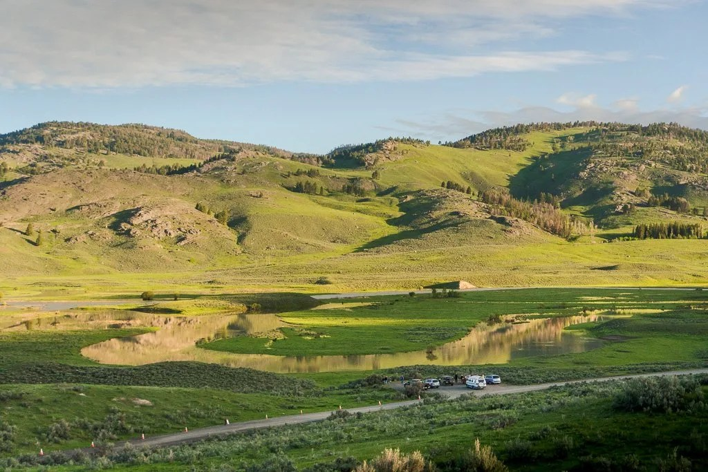 Grand Teton to Yellowstone to Glacier National Parks Road Trip Lamar Valley