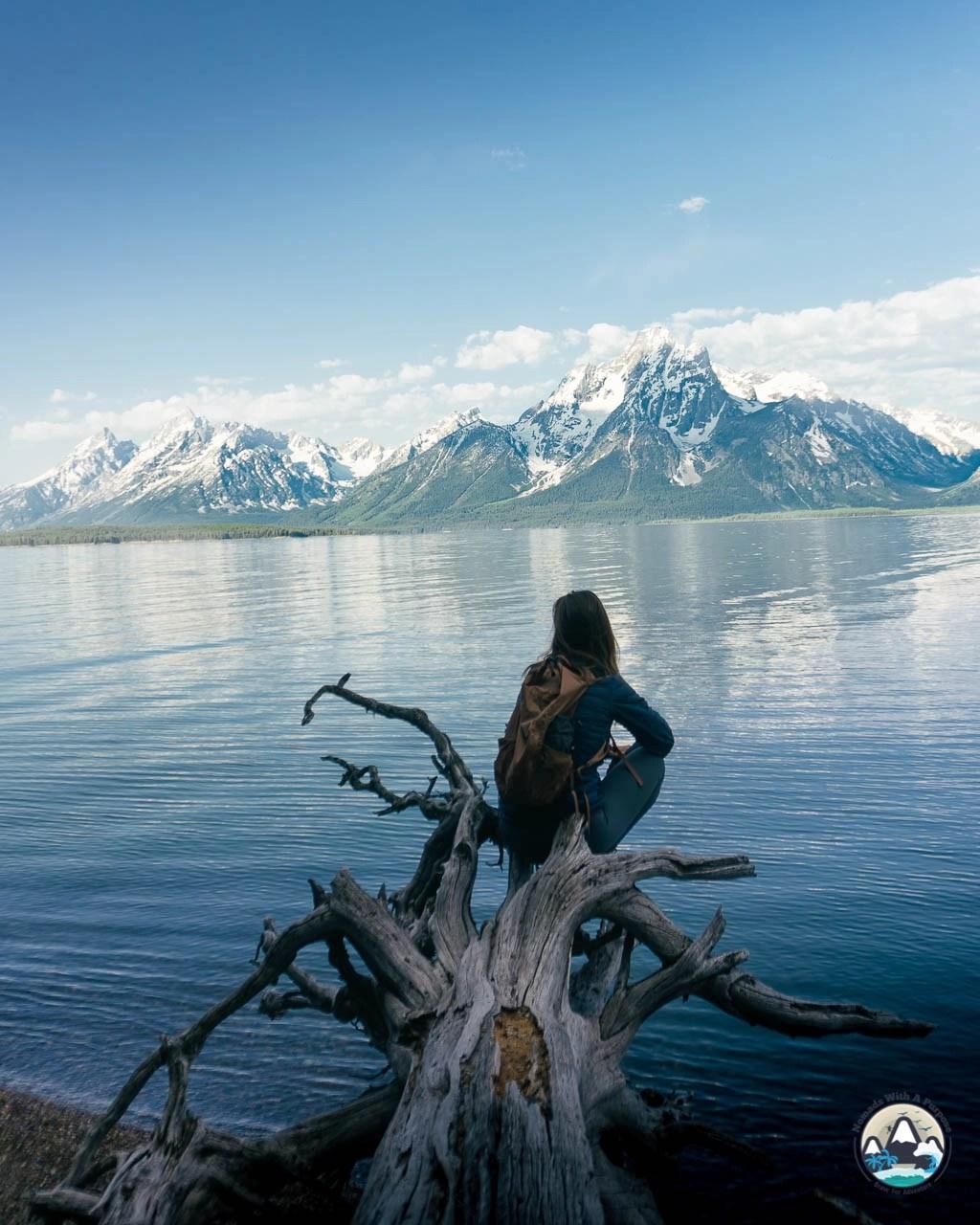 Colter Bay Lakeshore views, Grand Teton National Park, Wyoming
