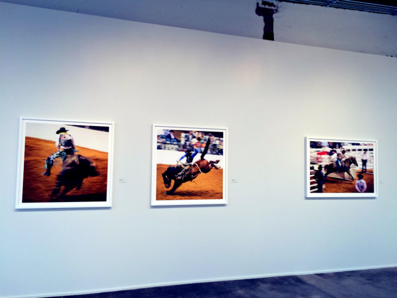 Rodeo photographs