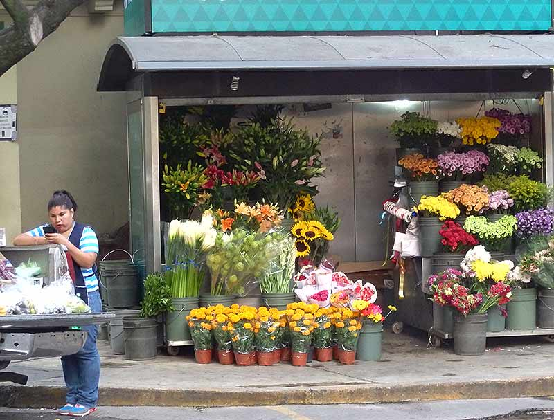 A flower stall on Avenida Amsterdam, La Condesa, Mexico City