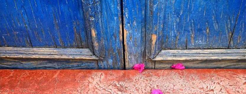 Blue doors, a rose-colored step and fuchsia bougainvillea petals in San Miguel de Allende, Mexico