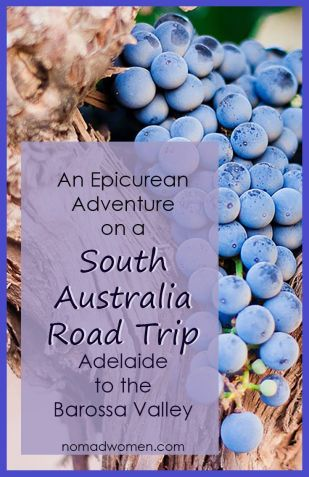Pin-Take an Epicurean Adventure on a Road Trip through South Australia.
