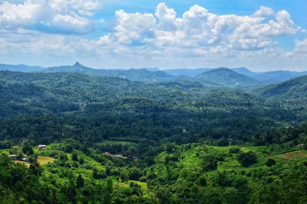 Kandy Train View