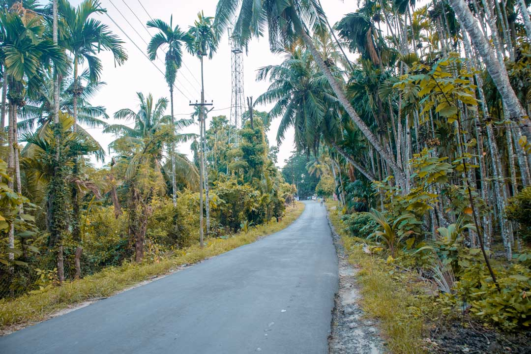 A guide to Andaman