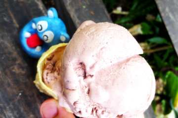 Chocolate & Honey Ice Cream from Bohol Bee Farm Bohol Philippines