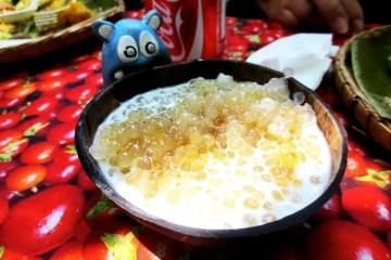 Coconut Milk with Sago from Villa Escudero Philippines
