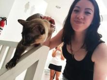Caroline Kittie Crumbs & Whiskers Cat Cafe