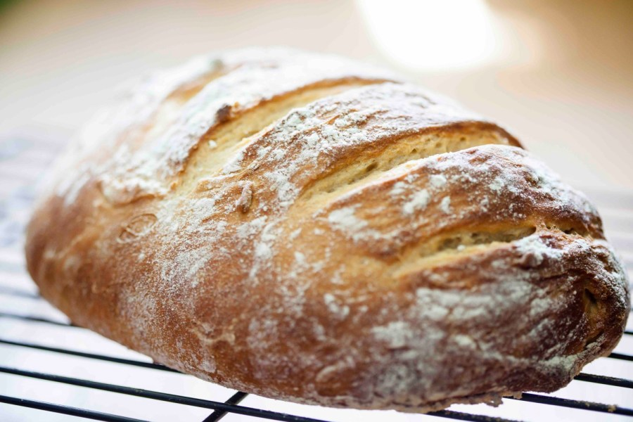 recipes for no knead breads
