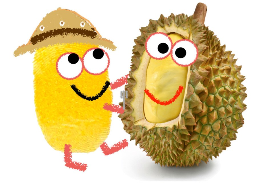 durian with nomnomenon