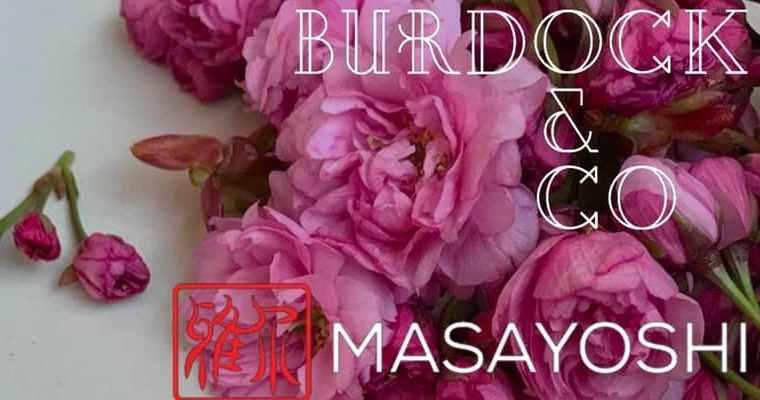 Sakura and Spot Prawns Event at Burdock & Co | Masayosi