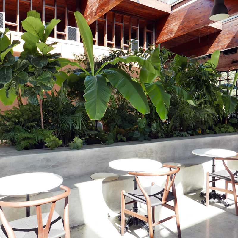 LA FORET CAFE BURNABY COFFEE NOMSS FOOD BLOG VANCOUVER