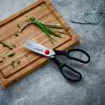 zwilling-kitchen-scissors https://amzn.to/31OrgIJ