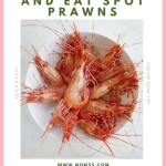 When it comes to eating spot prawns, there is no wrong way to eat it. But dipping these delicate flavour bombs in this flavourful Spot Prawns Chili Soy Dipping Sauce makes all the difference! It is tangy, savoury and has a bit of heat! How to eat spot prawns #spotprawns #soydippingsauce #chilisoysaucerecipe #spotprawnsrecipe #chineserecipes #instanomss #howtoeatspotprawns #spotprawnseason