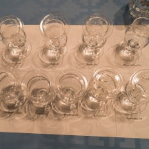 The 9 gins covered in the seminar