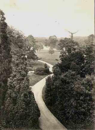 A view from the top of the house along the coach road towards the Holt Street gate lodge