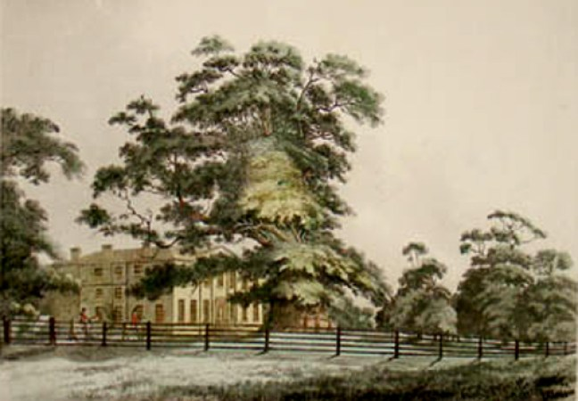 Fredville House and the Majestie Oak as Jane Austen would have known it