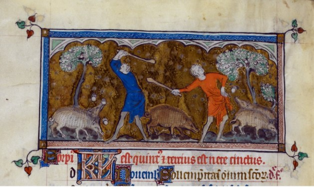 Swineherds knocking down acorns for pigs Queeen Mary Psalter, 1310 and 1320,