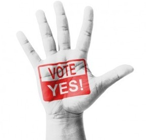 Open hand raised, Vote Yes sign painted, multi purpose concept -