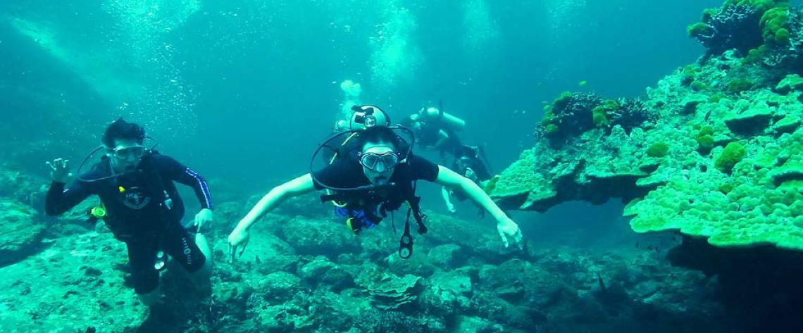 Eritrea Diving