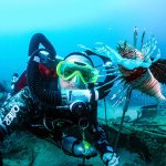 Underwater Lovers Have A New Festival to Explore in Grenada