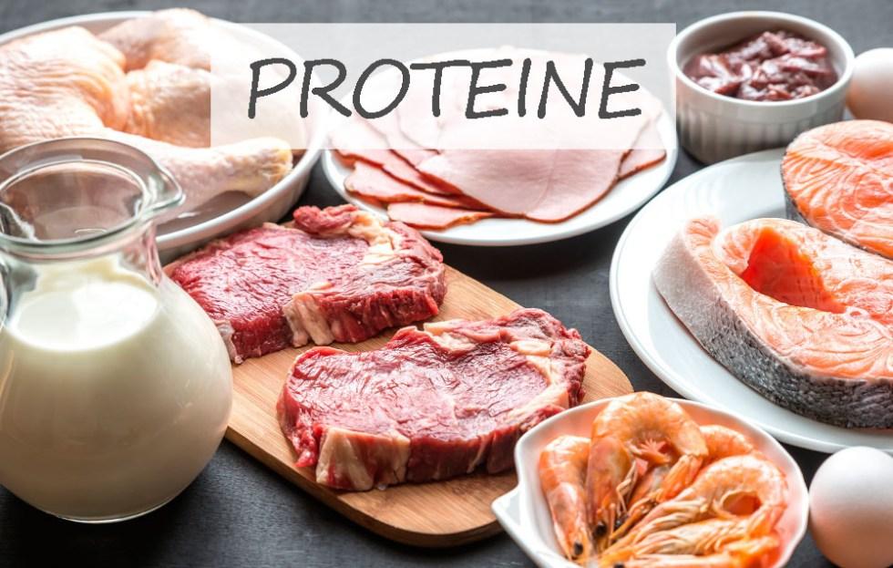 Proteine: che cosa sono, a cosa servono e in quali alimenti si trovano -  NonSoloBenessere.it