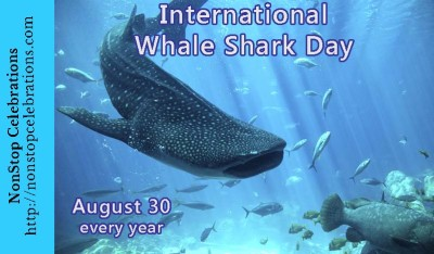 Image result for international whale shark day 2018