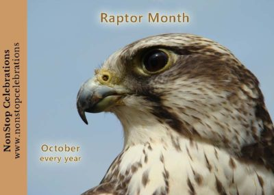 Falcon celebrating Raptor Month all October