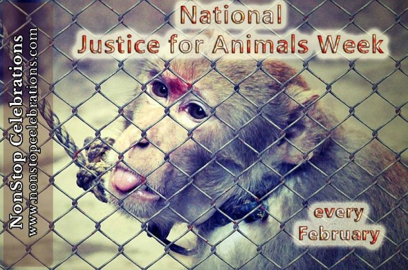 National Justice for Animals Week is every February
