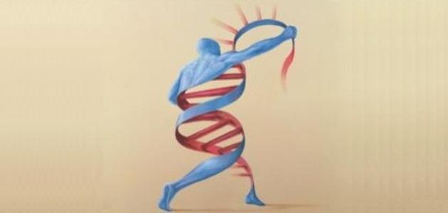 DNA_Man